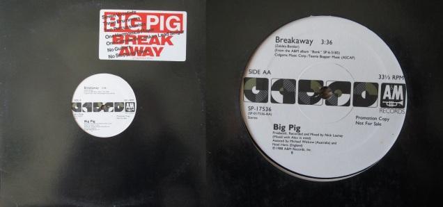 BigPigBreakaway